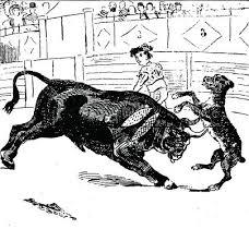 El perro Paco en los toros