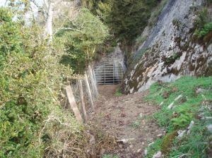 Cueva de Abauntz